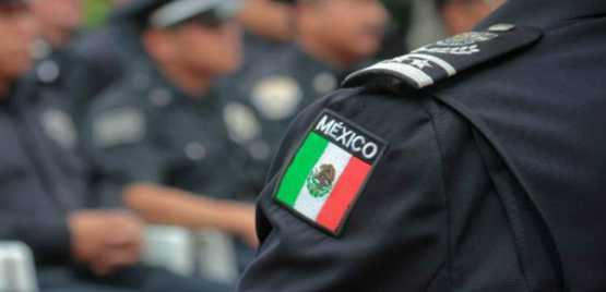 Organized crime Italy and Mexico